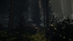 The Forest game screenshots 11
