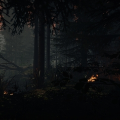 The Forest game screenshots 12