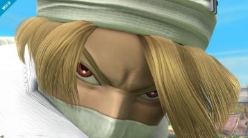 Sheik Smash Bros screenshots 06