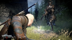 The Witcher 3 Wild Hunt screenshots 13