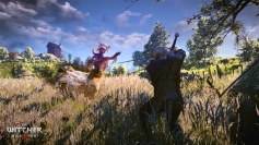 The Witcher 3 Wild Hunt screenshots 14