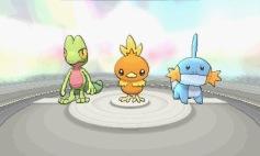 3DS_PokemonORAS_24