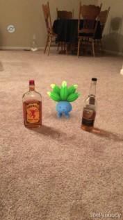 Pokémon GO 22