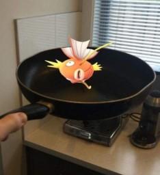 Pokémon GO 27
