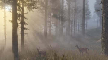 Red Dead Redemption 2 Screen 6